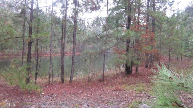 1253 Mt Hope Rd, Guyton, GA 31312 (MLS #8888826) :: Anderson & Associates