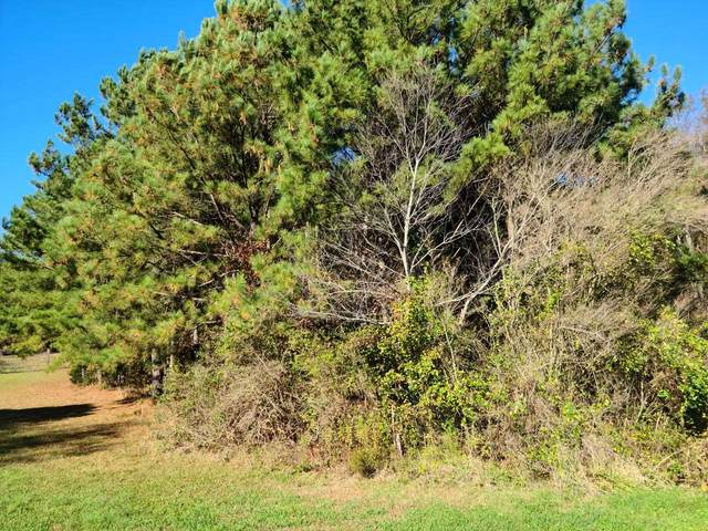 0 Morgan Valley Rd, Rockmart, GA 30153 (MLS #8889231) :: Buffington Real Estate Group