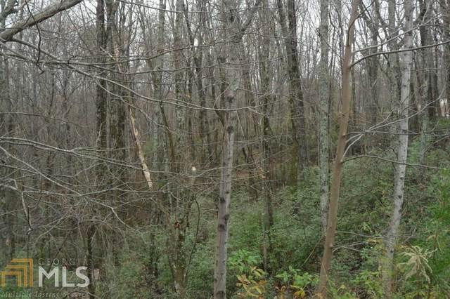 159 Raspberry Ln, Clarkesville, GA 30523 (MLS #8894867) :: Keller Williams Realty Atlanta Classic