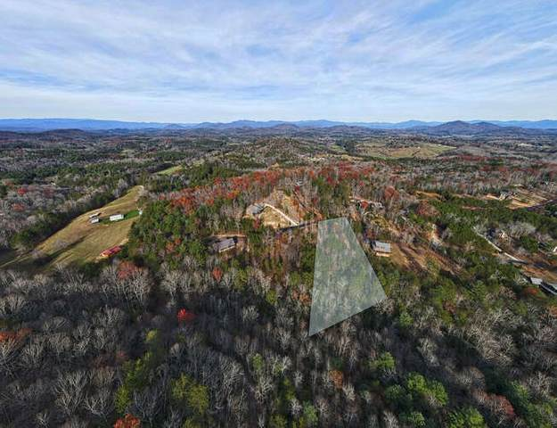 0 Ray Dr Lot 52, Blairsville, GA 30512 (MLS #8895136) :: Perri Mitchell Realty