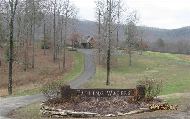 0 Andes Ridge Lot 258, Ellijay, GA 30536 (MLS #8896874) :: RE/MAX Center