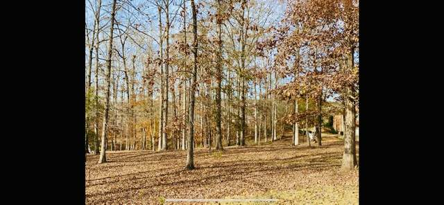 503 River Overlook, Forsyth, GA 31029 (MLS #8897265) :: Tim Stout and Associates