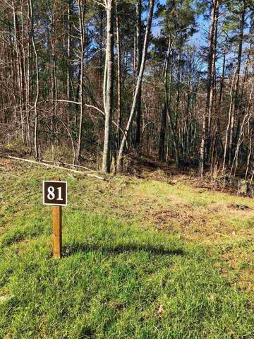 0 Linger Longer Dr, Ellijay, GA 30536 (MLS #8898027) :: Scott Fine Homes at Keller Williams First Atlanta