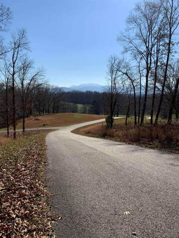 0 Arbor Ln Lot 73, Blairsville, GA 30512 (MLS #8899372) :: Crest Realty