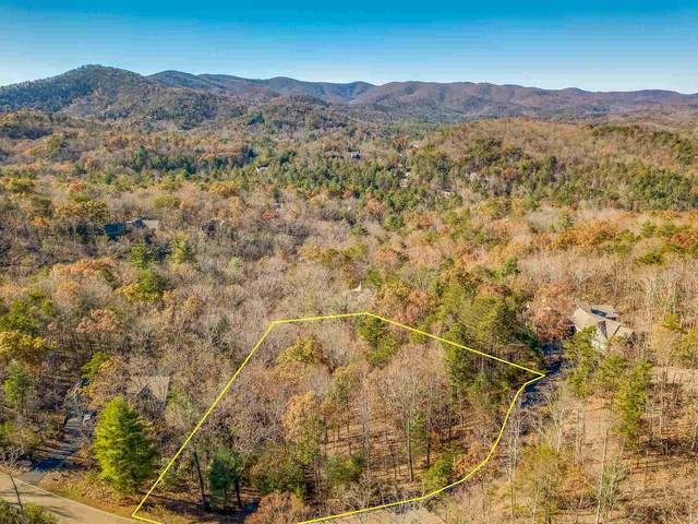 3404 Wildcat, Big Canoe, GA 30143 (MLS #8901097) :: Team Cozart