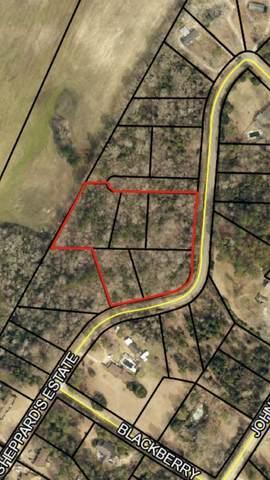 0 Sheppard Estate Loop 082A023, 082A02, Sylvania, GA 30467 (MLS #8902020) :: RE/MAX Center