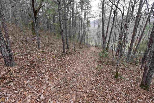0 Hawksclaw 8.91 Acres 8.91 Acres, Blairsville, GA 30512 (MLS #8906737) :: Rettro Group