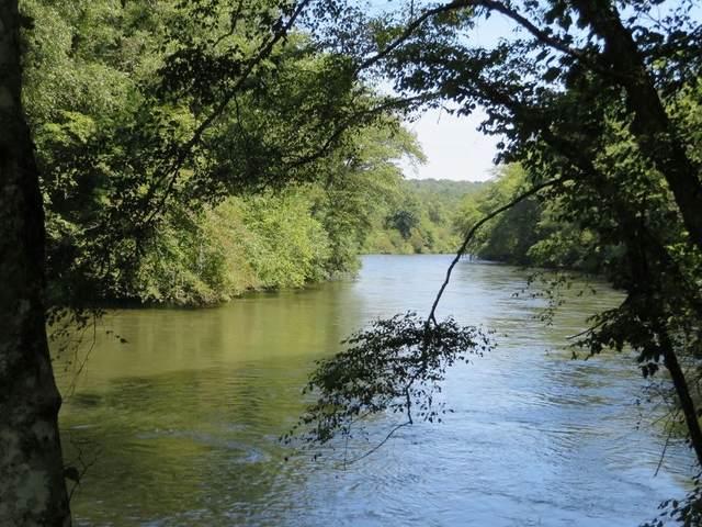 45 Coldwater Creek Trl, Mineral Bluff, GA 30559 (MLS #8907232) :: The Heyl Group at Keller Williams