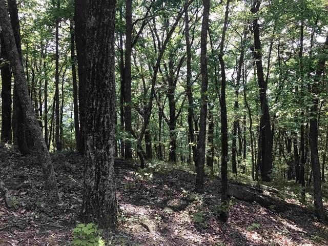 2 Mountain Oak, Cleveland, GA 30528 (MLS #8910627) :: AF Realty Group