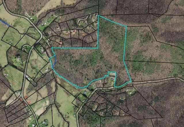 46 Sally Gap Rd, Hayesville, NC 28904 (MLS #8913330) :: RE/MAX Eagle Creek Realty