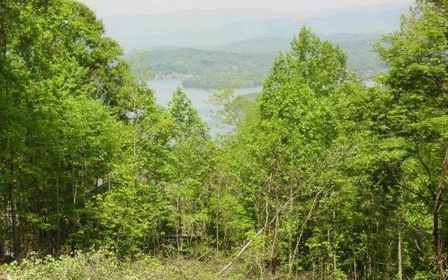 0 Eagles Vw Lot 73, Hayesville, NC 28904 (MLS #8913412) :: Crest Realty