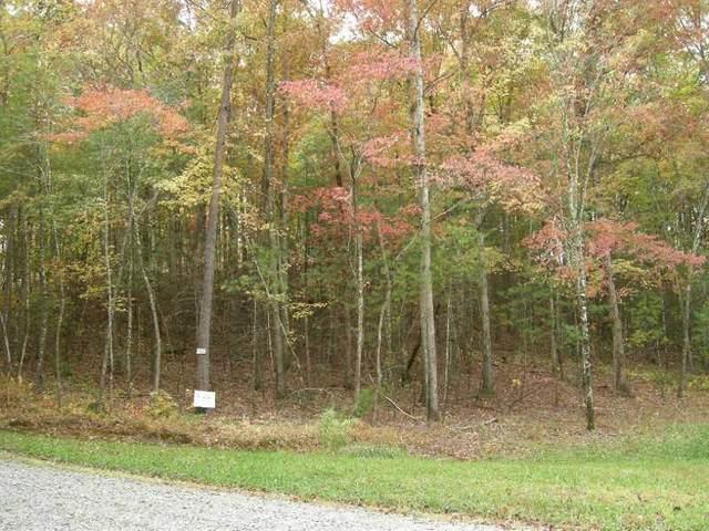 18 Pickett Mill Ln, Ellijay, GA 30540 (MLS #8913803) :: Regent Realty Company