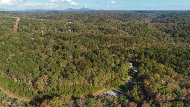 53 Old Stamp Mill Rd, Dahlonega, GA 30533 (MLS #8916263) :: Team Cozart