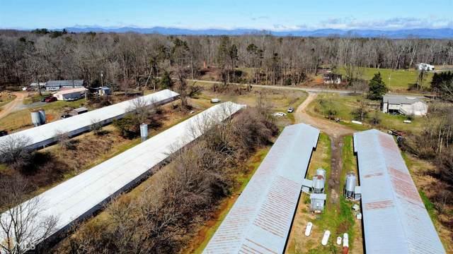 111 Denton Rd, Dawsonville, GA 30534 (MLS #8937901) :: RE/MAX Eagle Creek Realty