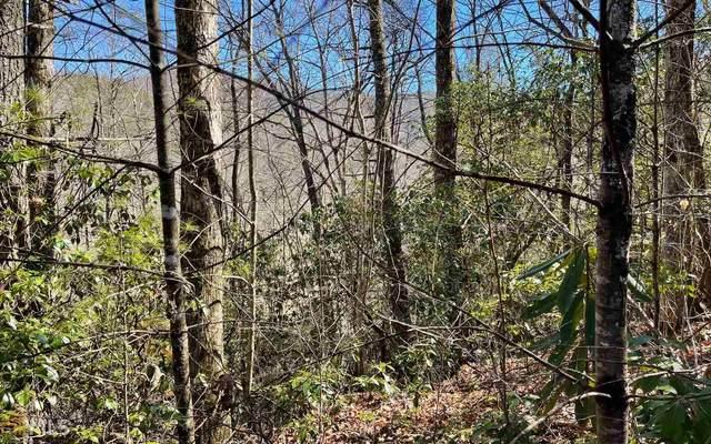0 Soapstone Tr 1E, Hiawassee, GA 30546 (MLS #8945111) :: RE/MAX Eagle Creek Realty