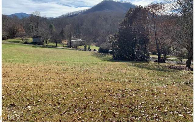0 Penland Oaks Subdivision Lot 43, Hayesville, NC 28904 (MLS #8946001) :: Crest Realty