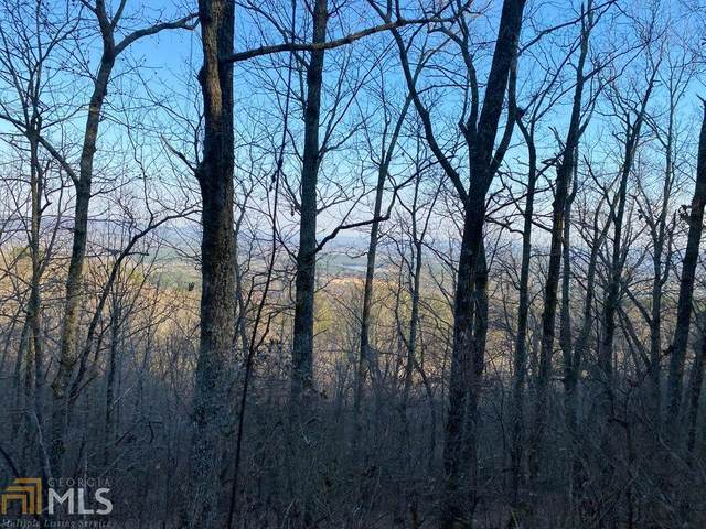 0 Dunaway Gap Rd, Armuchee, GA 30105 (MLS #8948684) :: RE/MAX Eagle Creek Realty
