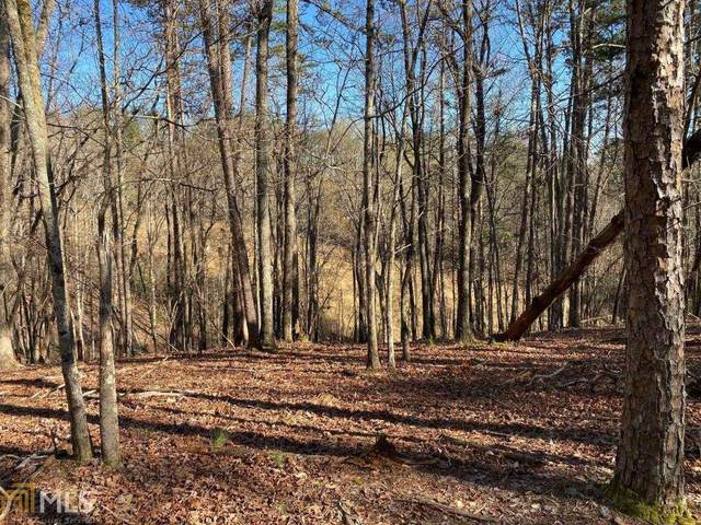 65 Placer Mining Rd, Dahlonega, GA 30533 (MLS #8955094) :: RE/MAX Eagle Creek Realty