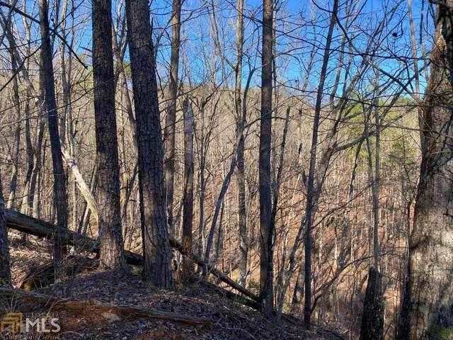 67 Placer Mining Rd, Dahlonega, GA 30533 (MLS #8955101) :: RE/MAX Eagle Creek Realty