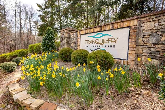0 Tranquility At Carters Lake Lot 28 & 33, Ellijay, GA 30540 (MLS #8955286) :: RE/MAX Eagle Creek Realty