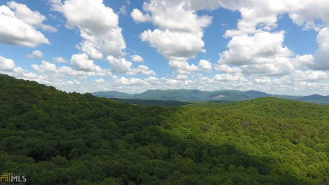 0 Turkey Knob Estates Lot 17, Ellijay, GA 30540 (MLS #8956606) :: Perri Mitchell Realty