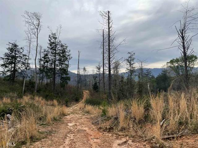 0 Pack Creek Rd, Blue Ridge, GA 30513 (MLS #8960511) :: Perri Mitchell Realty