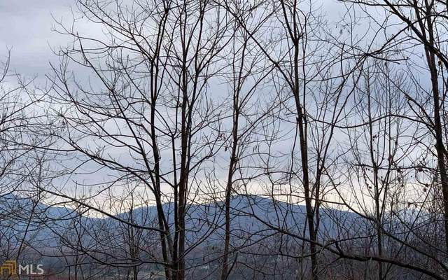 0 Woods Of Hunter Lot 8, Hayesville, NC 28904 (MLS #8961236) :: RE/MAX Eagle Creek Realty