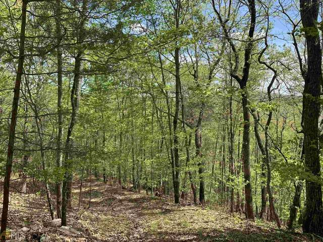 0 Three Springs Lot 4, Morganton, GA 30560 (MLS #8972162) :: Rettro Group