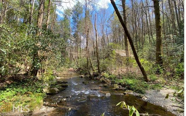 5 AC Jack's River, Blue Ridge, GA 30513 (MLS #8972882) :: Rettro Group