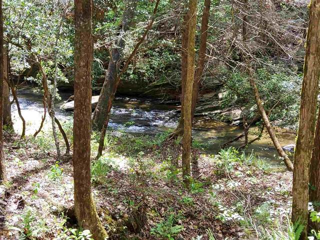 91/92 Mountain Creek Holw 91/92, Talking Rock, GA 30175 (MLS #8975054) :: AF Realty Group