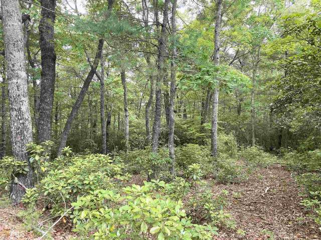 0 Vogel Vista 20 & 21, Blairsville, GA 30512 (MLS #8976291) :: RE/MAX Eagle Creek Realty