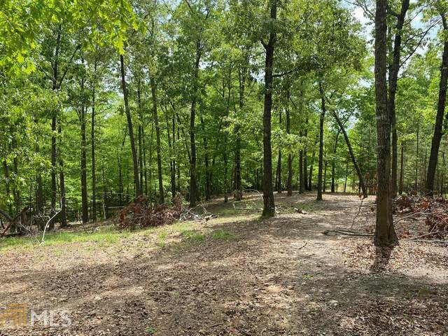0 Fern Gulley Rd, Blairsville, GA 30512 (MLS #8976491) :: Rettro Group