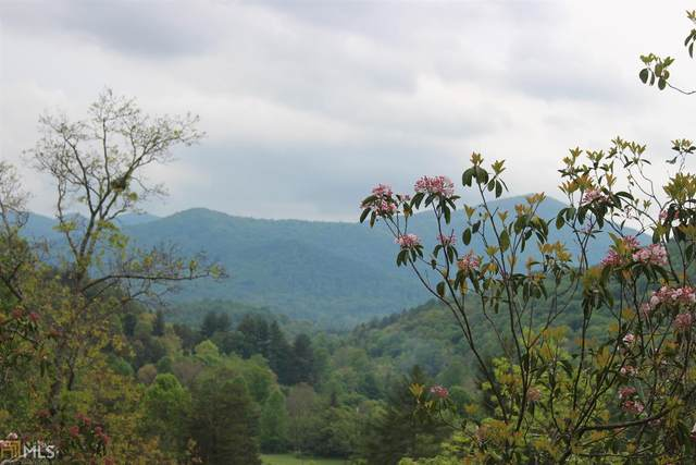 0 Olds Mountain Peak #8, Rabun Gap, GA 30568 (MLS #8980169) :: Amy & Company | Southside Realtors
