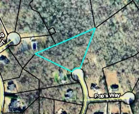 1101 Carrie Lees Pl, Watkinsville, GA 30677 (MLS #8982548) :: Houska Realty Group