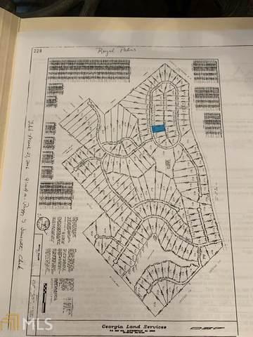 V/L Palm Cir F-38, Hawkinsville, GA 31036 (MLS #8988428) :: Amy & Company | Southside Realtors