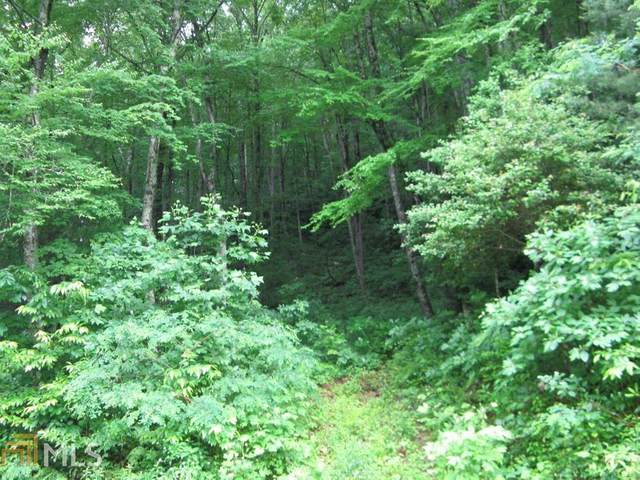0 Shake Hollow Drive Lot 7, Rabun Gap, GA 30568 (MLS #8996798) :: Buffington Real Estate Group