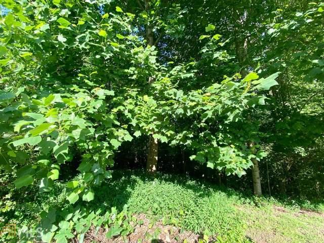 4847 Daintree Ct, Flowery Branch, GA 30542 (MLS #9009705) :: Crown Realty Group