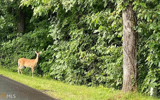 0 Licklog Ridge Lot 84A, Hayesville, NC 28904 (MLS #9019302) :: Perri Mitchell Realty