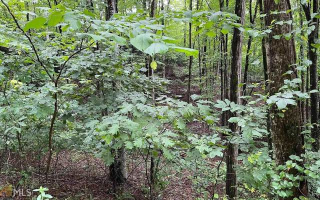 0 Mountain Harbour 45Ac, Hayesville, NC 28904 (MLS #9019326) :: Perri Mitchell Realty
