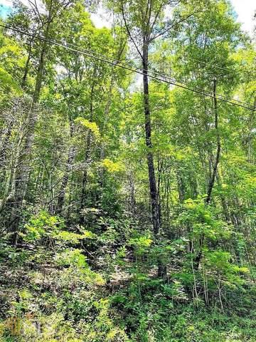 0 Blue Ridge Gap Road, Rabun Gap, GA 30568 (MLS #9021731) :: The Ursula Group