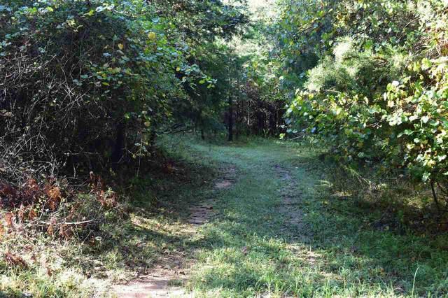 0 Fowler Creek Drive Lot 8, Cleveland, GA 30528 (MLS #9037494) :: Rettro Group
