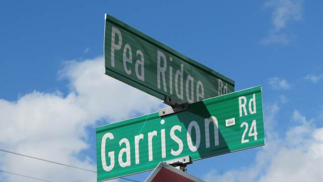0 Pea Ridge Road, Cornelia, GA 30531 (MLS #9037796) :: Houska Realty Group