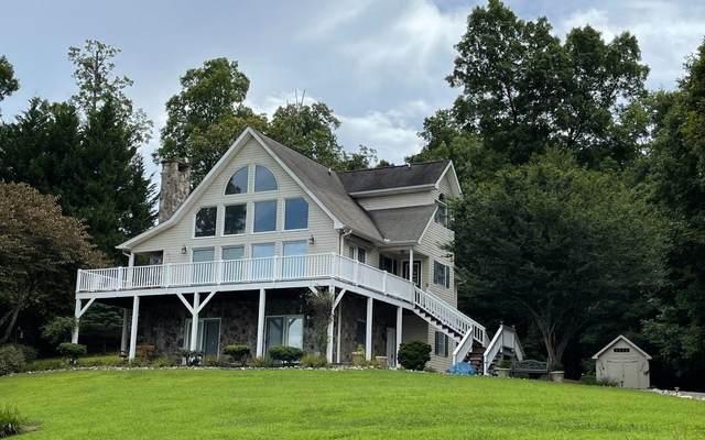 290 White Oak Drive, Warne, NC 28909 (MLS #9039102) :: Morgan Reed Realty