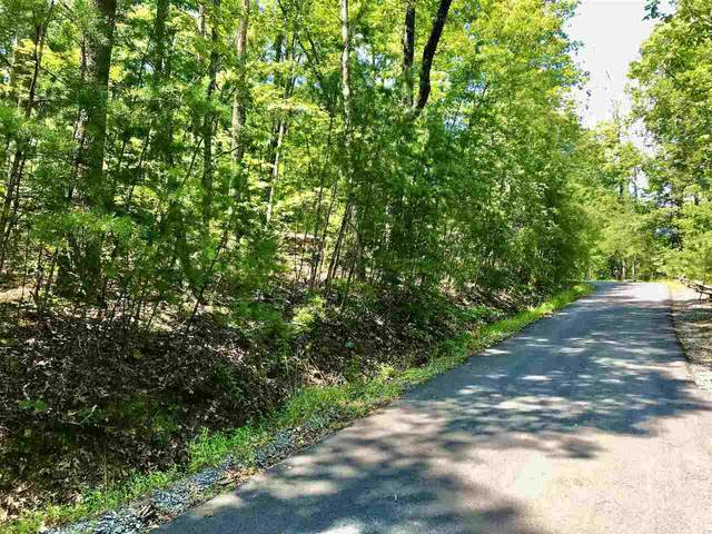 0 Humphrey Heights Road #11, Mineral Bluff, GA 30559 (MLS #9040767) :: Maximum One Realtor Partners