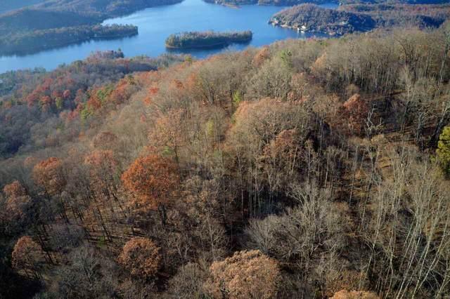 0 Rainwater Trail #11, Tiger, GA 30576 (MLS #9041401) :: The Heyl Group at Keller Williams