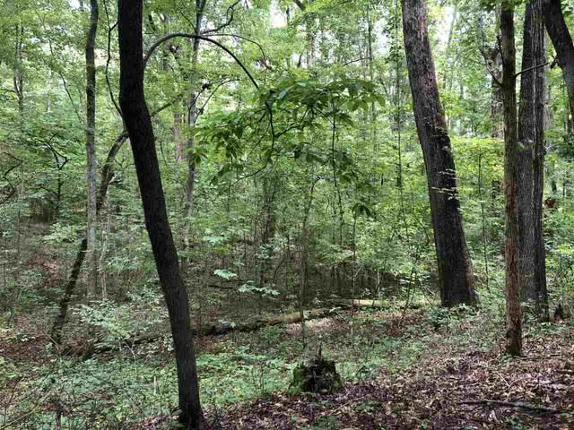 9166 Betony Wood Trail, Jonesboro, GA 30236 (MLS #9041526) :: Athens Georgia Homes