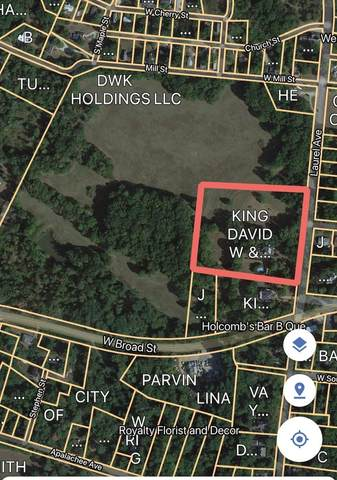 106 N Laurel Avenue, Greensboro, GA 30642 (MLS #9041557) :: Rettro Group