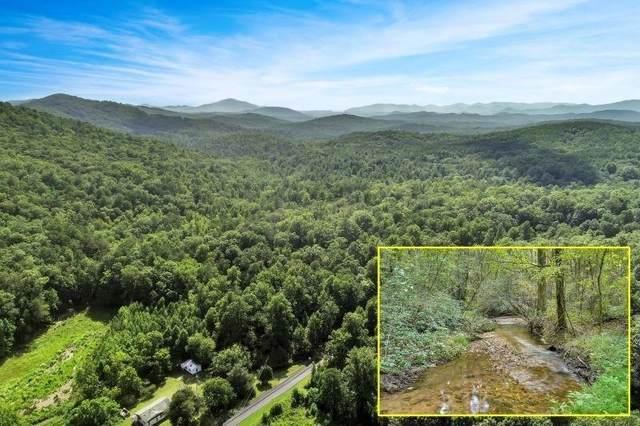 0 Oakey Mountain Road 117 ACRES, Clarkesville, GA 30523 (MLS #9042469) :: Houska Realty Group