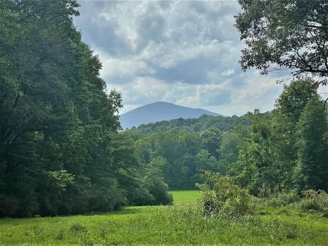 5180 Alec Mountain Road, Clarkesville, GA 30523 (MLS #9043357) :: Houska Realty Group