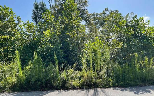 0 Standing Meadows Lot 33, Young Harris, GA 30582 (MLS #9045118) :: Crown Realty Group